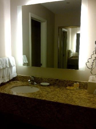 Residence Inn Erie: Sink in my room