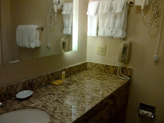 Residence Inn Erie: Sink in my sister's bathroom
