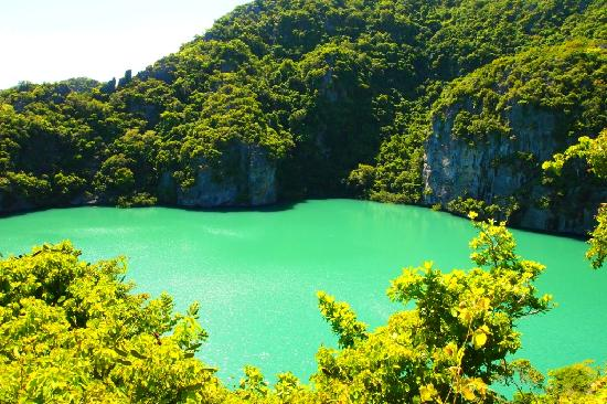 Emerald Lagoon At Mae Koh Island Picture Of Mu Ko Ang