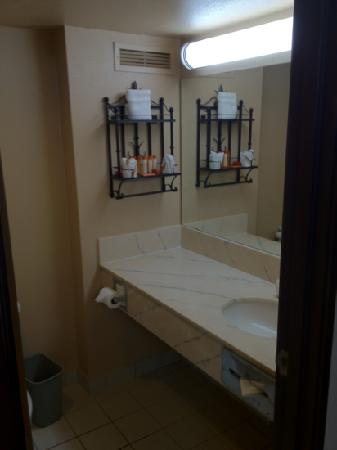 Viscount Suite Hotel: bathroom