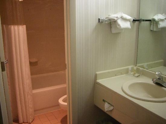 Howard Johnson Romulus Detroit Metro Airport: bathroom