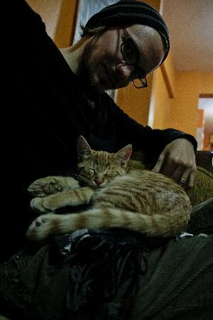 Stray Cat Hostel: Company.