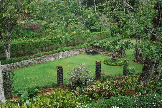 Hatton, Sri Lanka : Beautiful garden.
