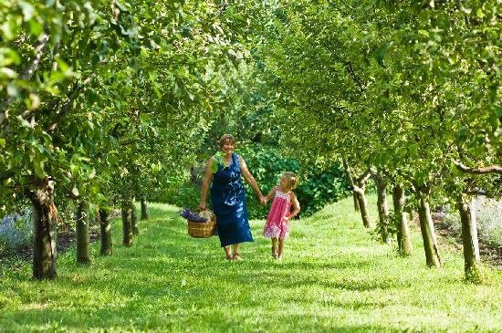 Catherine's Vineyard Cottages: In the orchard