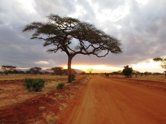 Garoda Resort: tramonto nella savana