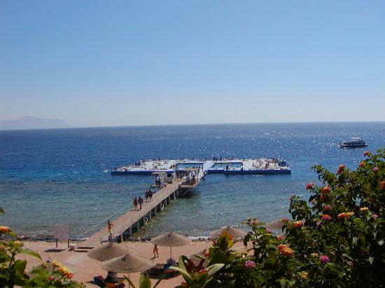 Domina Coral Bay Oasis: la bellissima spiaggia con pontile galleggiante