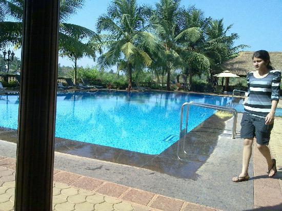 Prakruti Resort Pool