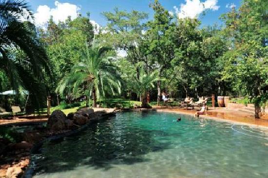Lokuthula Lodges: Lokuthula swimming pool
