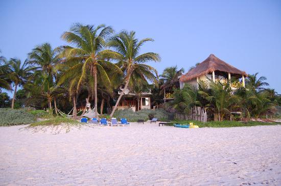 Casa de las Palmas: View from the beach