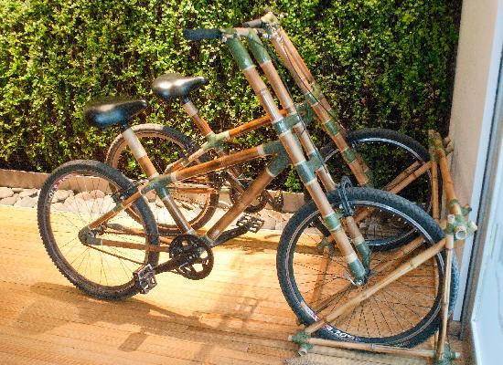 Casa Calma Hotel: Bamboo Bikes