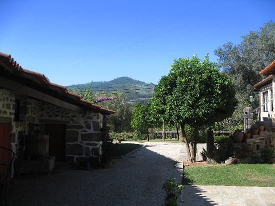 写真Quinta da Cancela枚