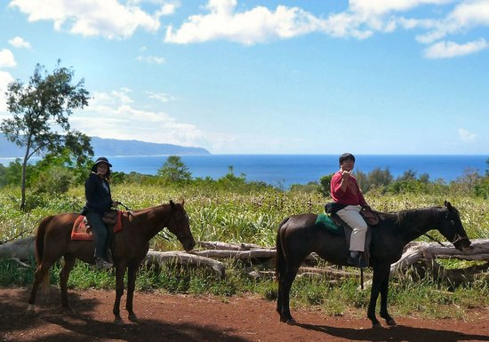 Happy Trails Hawaii: Happy riders from Japan