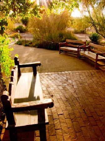 Tohono Chul Park- A place to rest