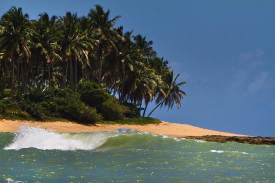 Hotel Fazenda Cala & Divino: Fazenda Cala & Divino, Praia do Espelho