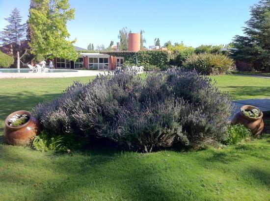 Robles de Besares : gorgeous landskaping
