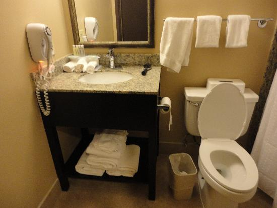 Holiday Inn Express - Los Angeles Downtown West : Bathroom in room - a little small