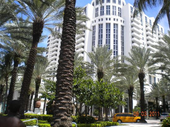 Loews Miami Beach Hotel : Hotel from Collins Ave