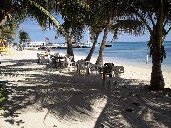 Estel's Dine by the Sea: Tables on the Beach