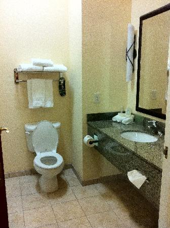 Holiday Inn Express Hotel & Suites Mount Airy South : Bathroom