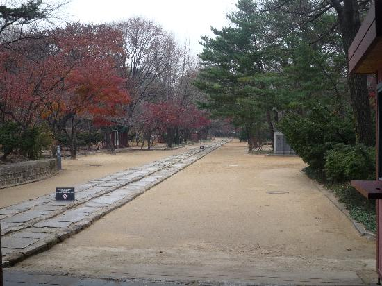 Jongmyo Shrine : 一本道
