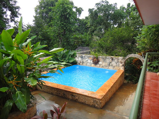 Casa Hamaca Guesthouse: The pool