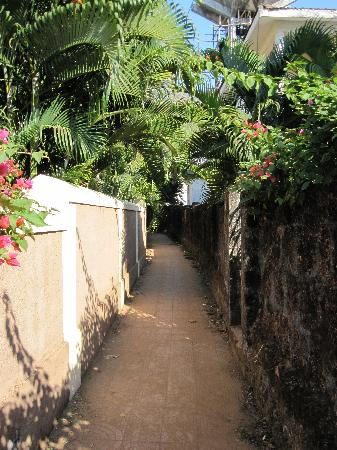 Alegria - The Goan Village: pathway to the beach