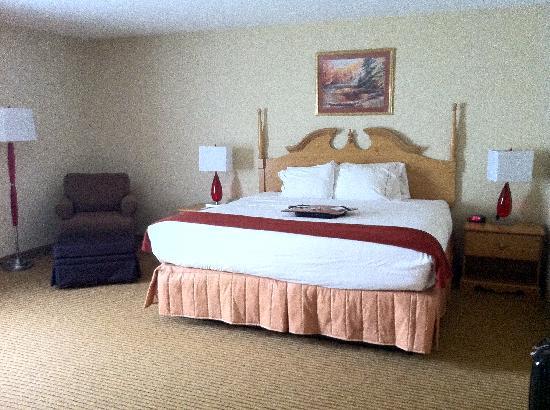 Holiday Inn Express Dublin : King Suite