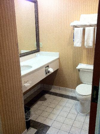 Holiday Inn Express Dublin : Bathroom