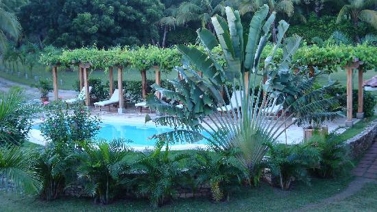 Hotel Villa Romana: Beautiful Pool area!