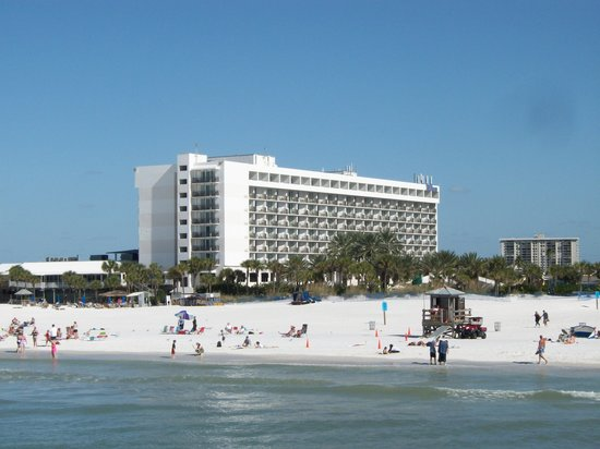 Hilton Clearwater Beach Resort Spa Hotel From Pier