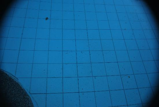 Punta de Fabian: not clean kiddie pool..totally not safe