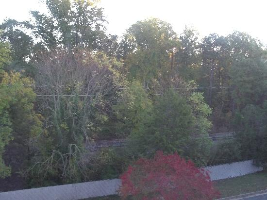 Patrick Henry Inn: view of the train tracks from the room