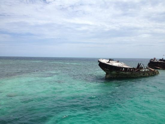 Heron Island Resort: ship wreck by the jetty