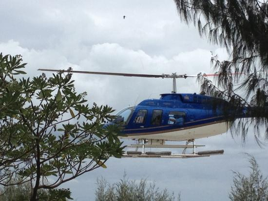 Heron Island Resort: helicopter transfer available.
