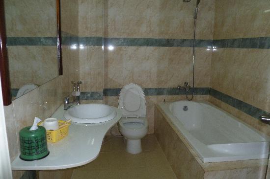 Star Hotel: The bathroom