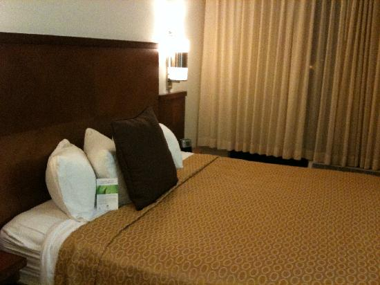 Hyatt Place Atlanta Airport North: King bed