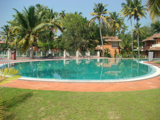The World Backwaters: pool