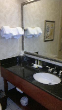 DoubleTree by Hilton Nashville-Downtown: Bathroom