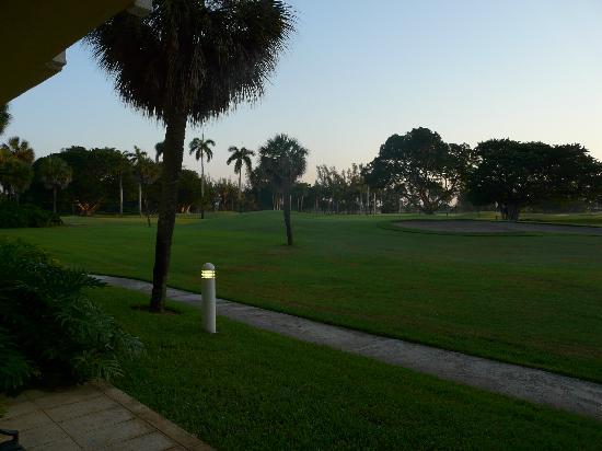 Hotel Indigo Miami Lakes: vue terrasse