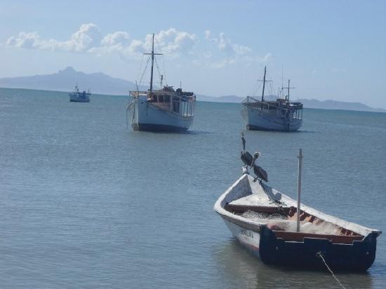 Hotel Patrick: Juangriego - pelican bay