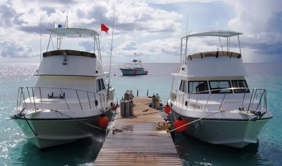 GO WEST Diving boats