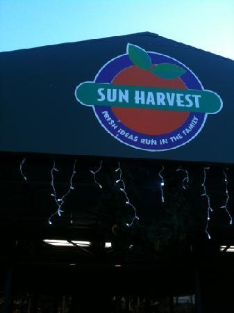 Sun Harvest Citrus: Sun Harvest