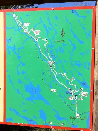 Bayer Lake Loop Trail : Musquodoboit Area Trail Map