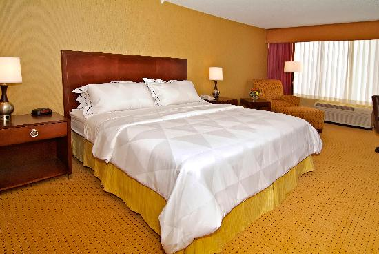 Radisson Hotel Rochester Riverside: Accommodations With One King
