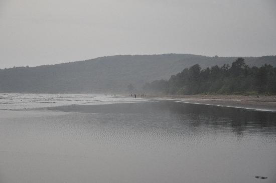 MTDC Beach Resort Harihareshwar: View of the beach