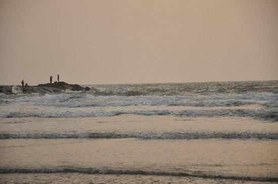 MTDC Beach Resort Harihareshwar: beach-2