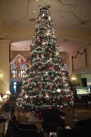 ฮิลตัน โคลัมโบ: Christmas Tree - Impressive!