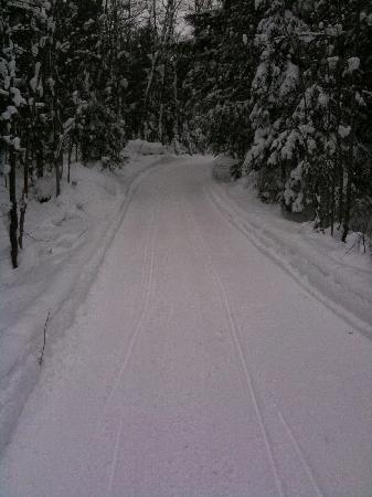 Toivola, MI: Great trails