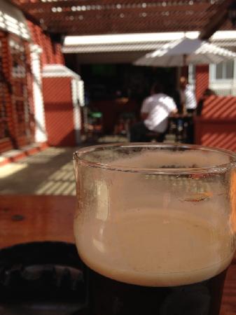 Robin Hood Pub & Restuarant: Perfect Guiness pour