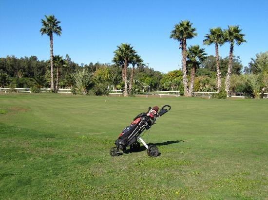 Royal Golf Club : si comincera presto la partita